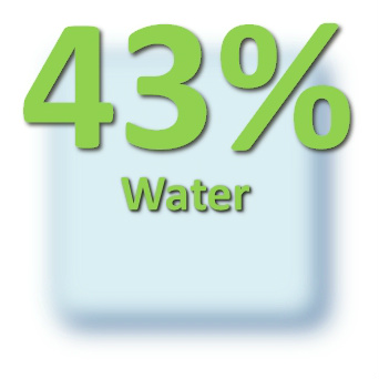 43 Water